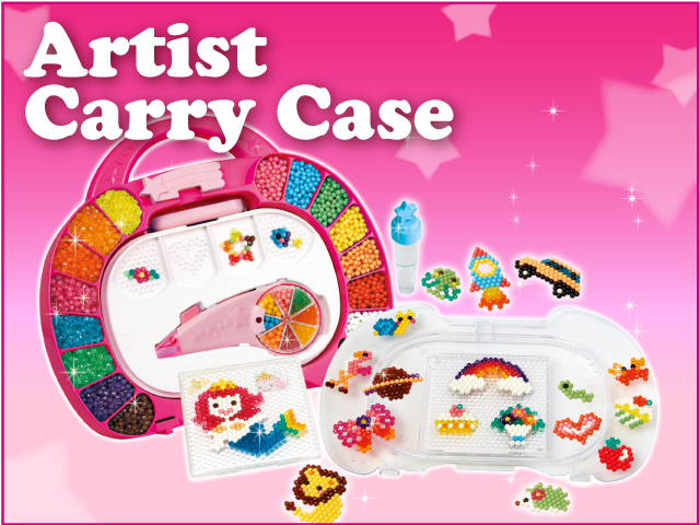 Artists Carry Case
