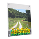 Photo frame Sunflower Field
